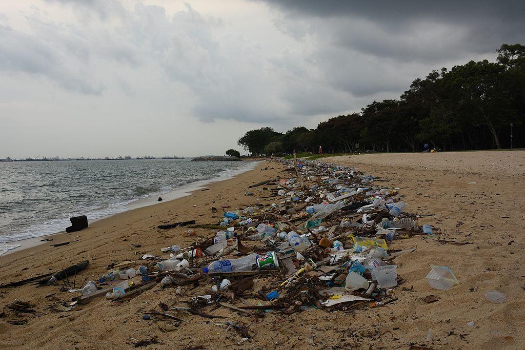 Odpad vyplavený z pacifického odpadového pása