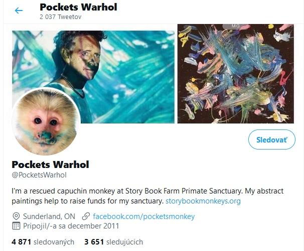 pockets warhol